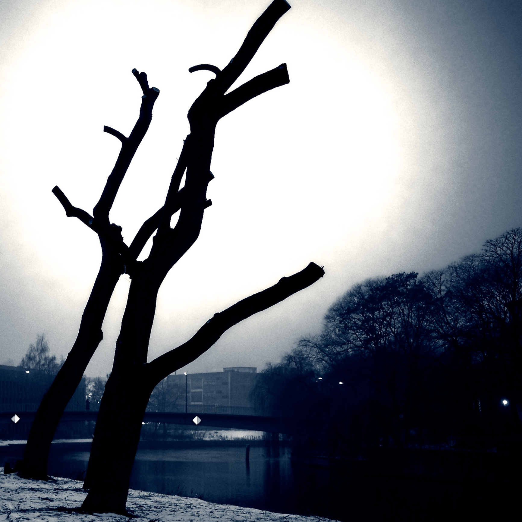 Berlin im Winter, Sonntagssymbolbild